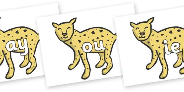 Phase 5 Phonemes on Cheetahs - Phonemes, phoneme, Phase 5, Phase five, Foundation, Literacy, Letters and Sounds, DfES, display