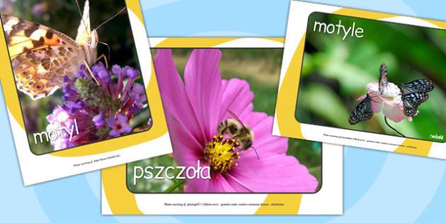 lato, gazetka szkolna, materialy edukacyjne, szkola podstawowa , Polish