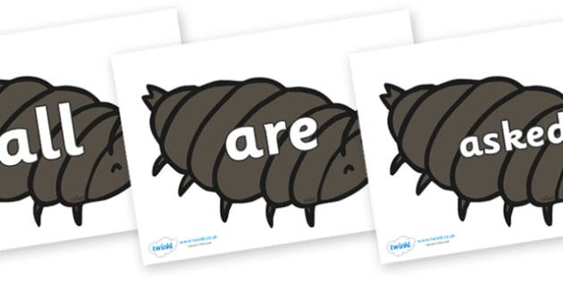 Tricky Words on Woodlice - Tricky words, DfES Letters and Sounds, Letters and sounds, display, words