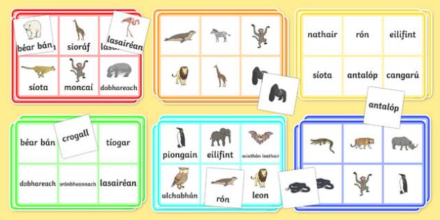 An Zú   Gaeilge Bingo