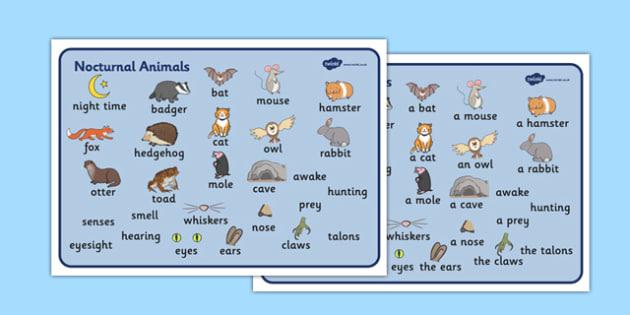 Nocturnal Animals Word Mat - animals, nocturnal, night, word mat, writing aid, mat, mole, owl, badger, bat, toad, mouse, hedgehog, fox, rabbit, cat, hamster, shadow, reflection, reflective