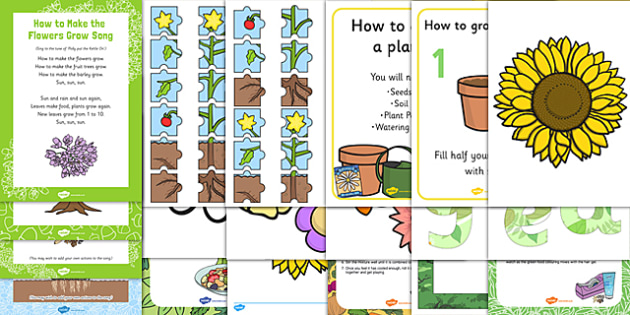Childminder EYFS Plants and Growth Resource Pack