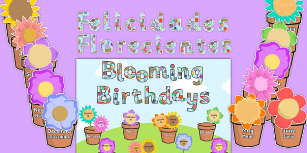 Blooming Birthdays Flower Display Pack Spanish Translation - spanish, birthdays, display, pack