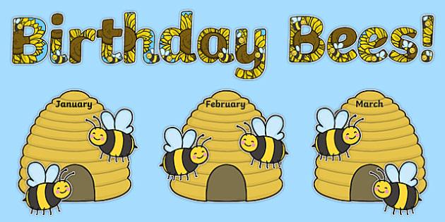 Birthday Bees Display Pack
