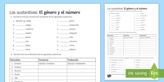 Nouns Gender and Number Activity Sheet - Spanish Grammar, activity sheet, gender, number, exercises, nouns, worksheet.