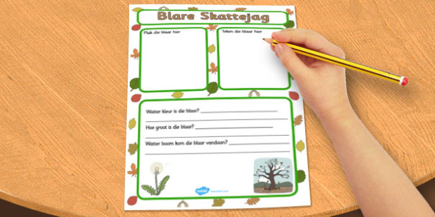 Afrikaans Leaf Collecting Writing Frame - afrikaans, leaf, frame