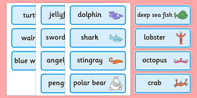 Word Cards to Support Teaching on Commotion In The Ocean - Story, book, resources, Giles Andreae, David Wojtowycz, word card, flashcards, cards, teaching resources, book resources, sea creatures, sea, book resource