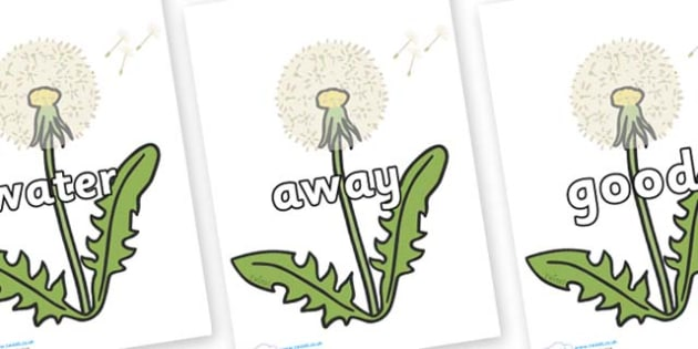 Next 200 Common Words on Dandelion Seeds - Next 200 Common Words on  - DfES Letters and Sounds, Letters and Sounds, Letters and sounds words, Common words, 200 common words