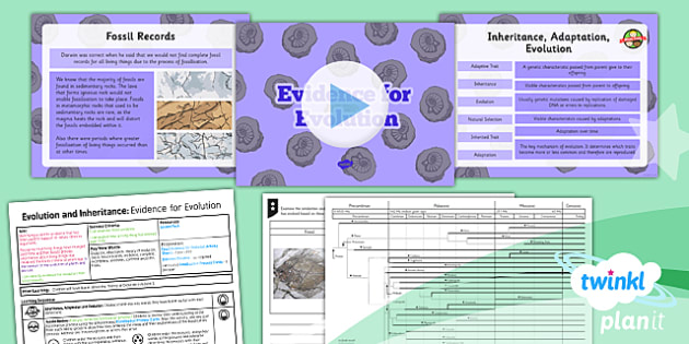 PlanIt - Science Year 6 - Evolution and Inheritance Lesson 4: Evidence for Evolution Lesson Pack - planit