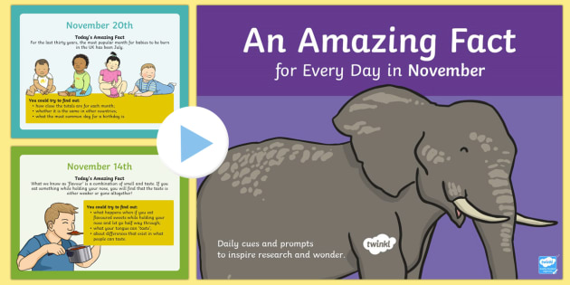 An Amazing Fact a Day November PowerPoint - amazing fact, day, november month