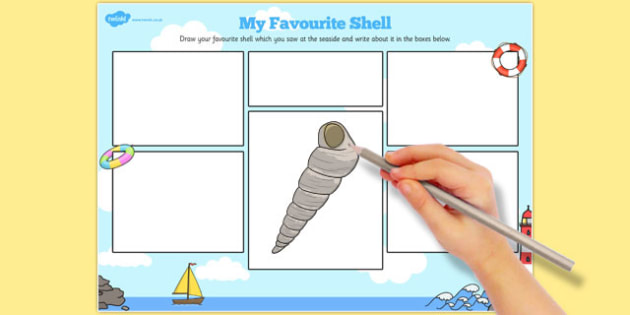 My Favourite Shell Activity Sheet - favourite, shell, activity, sheet, worksheet