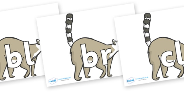 Initial Letter Blends on Raccoons - Initial Letters, initial letter, letter blend, letter blends, consonant, consonants, digraph, trigraph, literacy, alphabet, letters, foundation stage literacy