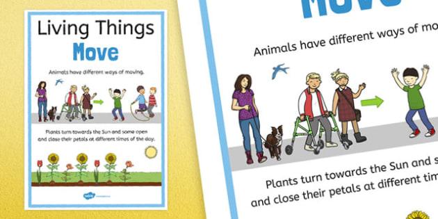 Living Things Move Display Poster - australia, living things, move, display poster, display, poster