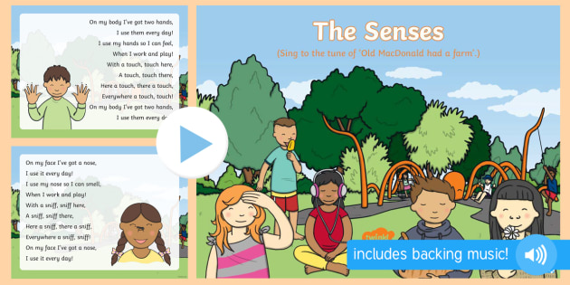The Senses Song PowerPoint