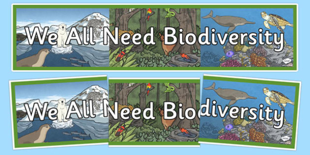 We All Need Biodiversity Display Banner - Biodiversity, Green schools, environment, display, banner, green flag, nature