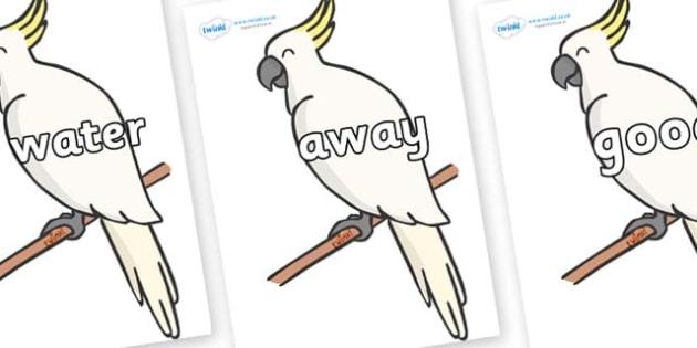 Next 200 Common Words on Cockatoos - Next 200 Common Words on  - DfES Letters and Sounds, Letters and Sounds, Letters and sounds words, Common words, 200 common words