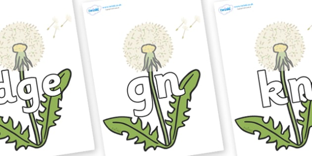 Silent Letters on Dandelion-Seeds - Silent Letters, silent letter, letter blend, consonant, consonants, digraph, trigraph, A-Z letters, literacy, alphabet, letters, alternative sounds