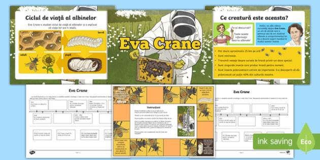 Eva Crane și albinele Pachet cu activități