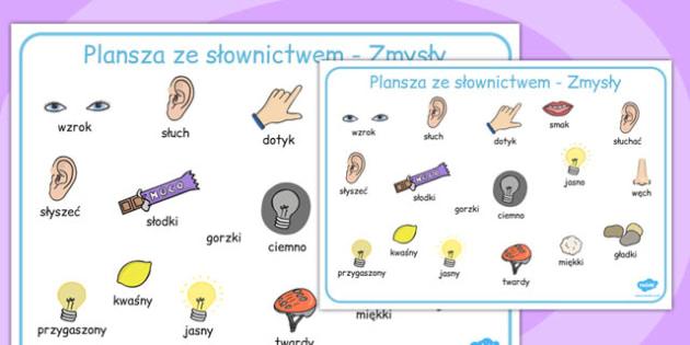 Plansza ze słownictwem Moje zmysły po polsku - dzieci , Polish