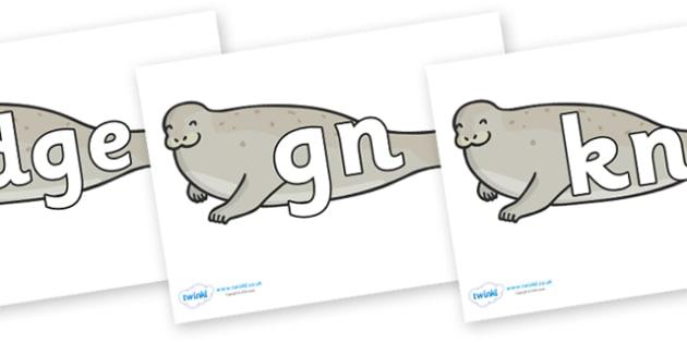 Silent Letters on Seals - Silent Letters, silent letter, letter blend, consonant, consonants, digraph, trigraph, A-Z letters, literacy, alphabet, letters, alternative sounds