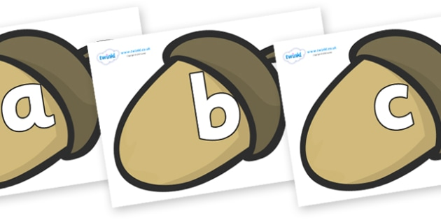 Phoneme Set on Brown Acorns - Phoneme set, phonemes, phoneme, Letters and Sounds, DfES, display, Phase 1, Phase 2, Phase 3, Phase 5, Foundation, Literacy