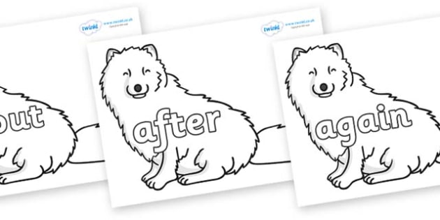 KS1 Keywords on Arctic Foxes - KS1, CLL, Communication language and literacy, Display, Key words, high frequency words, foundation stage literacy, DfES Letters and Sounds, Letters and Sounds, spelling