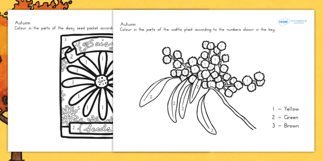 Autumn Colour by Number Worksheet - seasons, colouring, maths