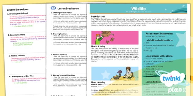 PlanIt - Art UKS2 - Wildlife Birds Planning Overview CfE - wildlife, birds, plan, planit, overview, ks2, history, 2014, planning