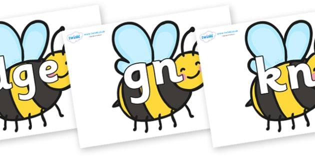 Silent Letters on Bees - Silent Letters, silent letter, letter blend, consonant, consonants, digraph, trigraph, A-Z letters, literacy, alphabet, letters, alternative sounds