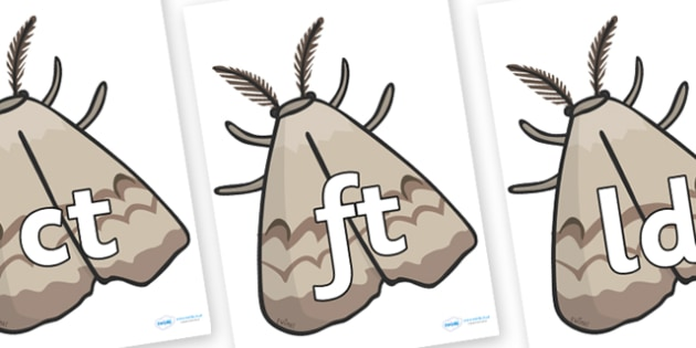 Final Letter Blends on Insects - Final Letters, final letter, letter blend, letter blends, consonant, consonants, digraph, trigraph, literacy, alphabet, letters, foundation stage literacy