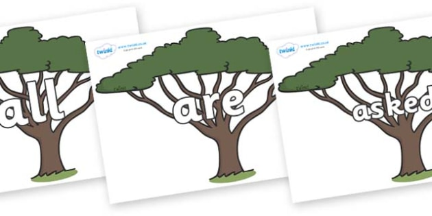 Tricky Words on Acacia Trees - Tricky words, DfES Letters and Sounds, Letters and sounds, display, words