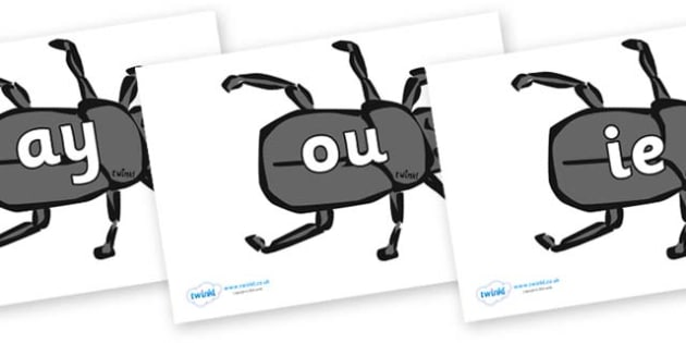 Phase 5 Phonemes on Beetles - Phonemes, phoneme, Phase 5, Phase five, Foundation, Literacy, Letters and Sounds, DfES, display
