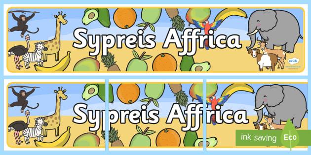 Sypreis Affrica Baner Arddangosfa - Dysgu Cymraeg fel Ail Iaith, Sypreis Affrica, baner arddangosfa,Welsh