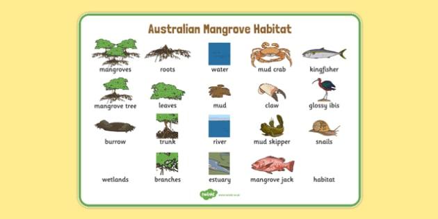 Australian Mangrove Habitat Word Mat - australia, Science, Year 1, Habitats, Australian Curriculum, Mangroves, Living, Living Adventure, Good to Grow, Ready Set Grow, Life on Earth, Environment, Living Things, Animals, Plants, Word Mat