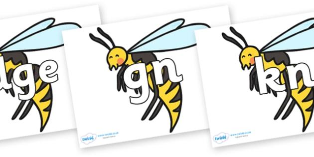 Silent Letters on Wasps - Silent Letters, silent letter, letter blend, consonant, consonants, digraph, trigraph, A-Z letters, literacy, alphabet, letters, alternative sounds
