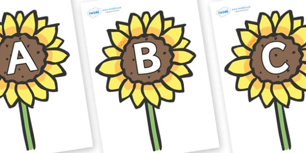 A-Z Alphabet on Sunflowers - A-Z, A4, display, Alphabet frieze, Display letters, Letter posters, A-Z letters, Alphabet flashcards