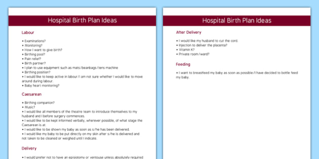Hospital Birth Plan Template - hospital, birth plan, template, birth, plan