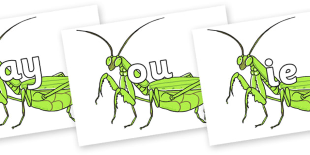Phase 5 Phonemes on Praying Mantis - Phonemes, phoneme, Phase 5, Phase five, Foundation, Literacy, Letters and Sounds, DfES, display