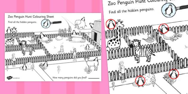 Zoo Penguin Hunt Colouring Sheet - zoo, penguin, hunt, colouring