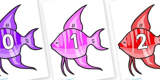 Numbers 0-31 on Angelfish - 0-31, foundation stage numeracy, Number recognition, Number flashcards, counting, number frieze, Display numbers, number posters