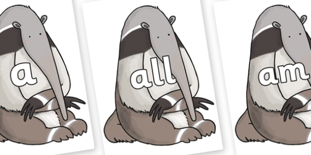 Foundation Stage 2 Keywords on Anteater to Support Teaching on The Great Pet Sale - FS2, CLL, keywords, Communication language and literacy,  Display, Key words, high frequency words, foundation stage literacy, DfES Letters and Sounds, Letters and So