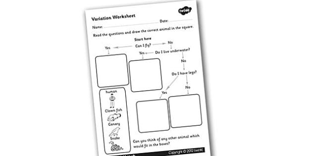 Variation Worksheet - flow diagram, flow chart, flow chart worksheet, variations, animal classification worksheet, animal flow chart worksheet, ks2 science