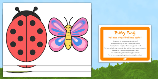 Do I Have Wings? Do I Have Spots? Busy Bag Prompt Card and Resource Pack - EYFS, Minibeasts, Creepy Crawlies, Bugs