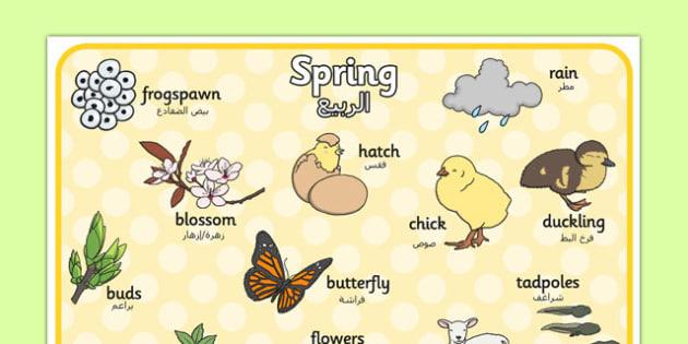 Spring Word Mat Arabic Translation - arabic, Spring, word mat, writing aid, lambs, daffodils, new life, flowers, buds, plants, growth