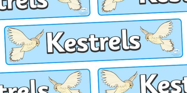 Kestrels Display Banner - kestrel class, class banner, class display, kestrels, classroom banner, classroom areas signs, areas, display banner, display