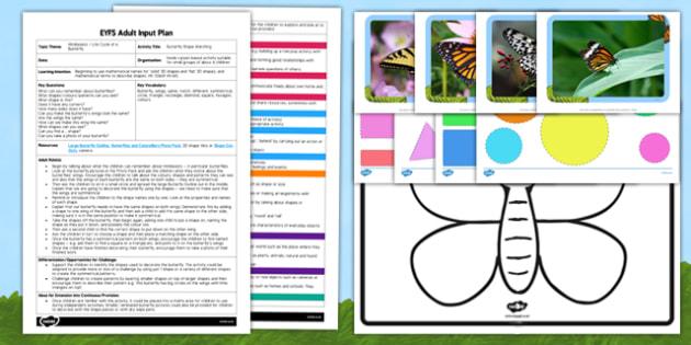 Butterfly Shape Matching EYFS Adult Input Plan and Resource Pack - plan