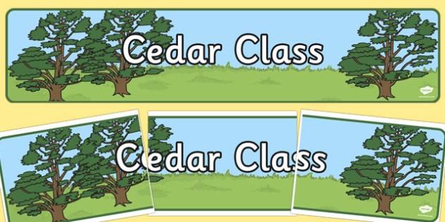 Cedar Tree Display Banner - cedar tree, display banner, display, banner