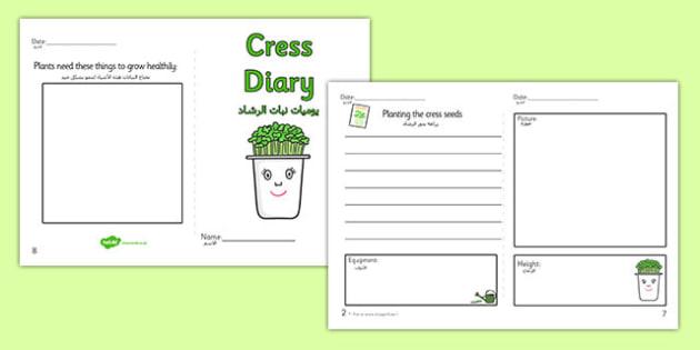 Growing Cress Diary Writing Frame Arabic Translation - arabic, growing cress, diary, writing