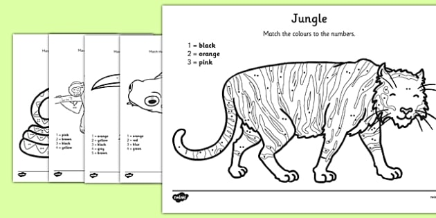 Jungle Colour by Number Counting Activity Sheet - colour, number, counting, activity, colour by number, count, jungle, worksheet