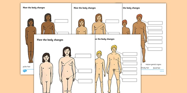 How Your Body Changes During Puberty Labelling Worksheet - changes, puberty, the human body, how the body changes, growth labelling worksheet, growing, ks2